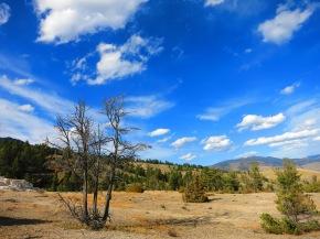 Eine andere Welt – Yellowstone NationalPark