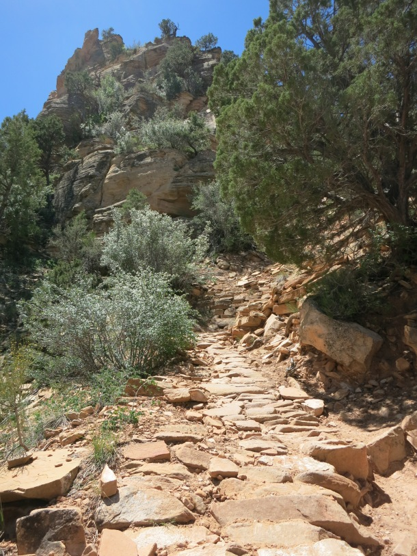 Grand Canyon (101)