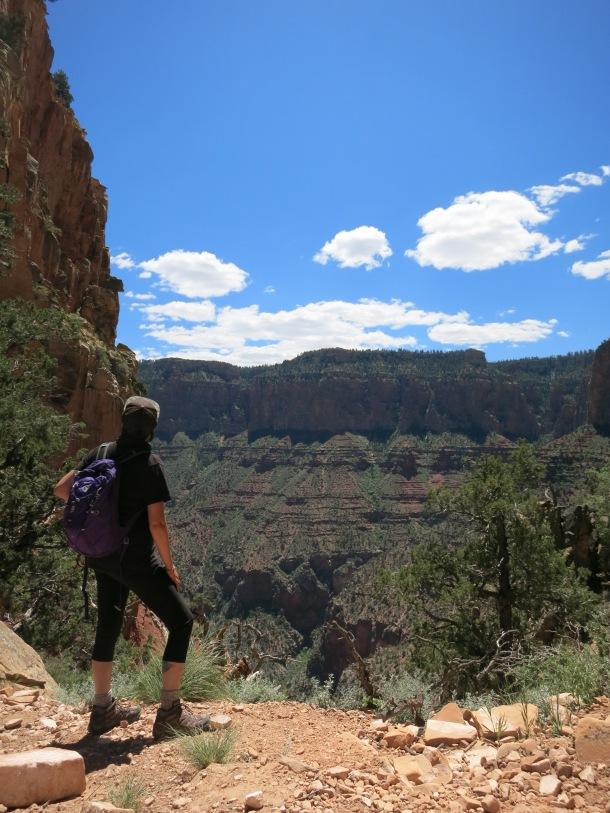 Grand Canyon (103)