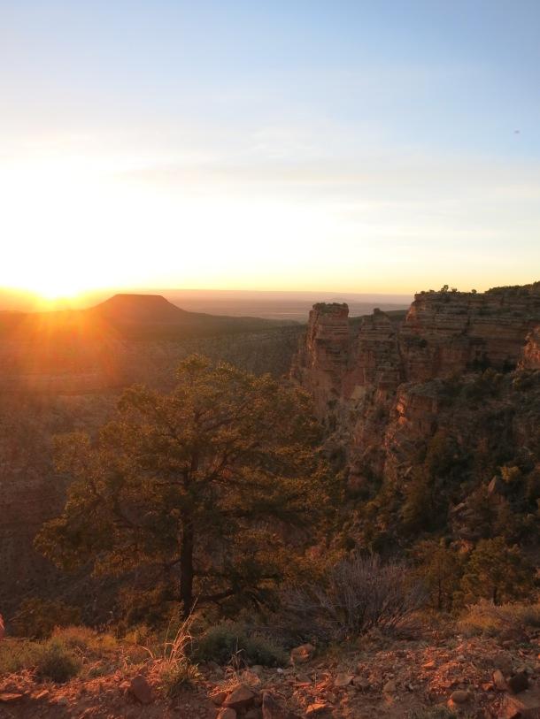 Grand Canyon (29)